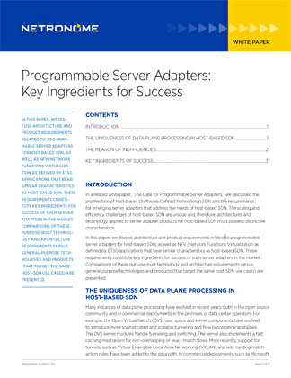 Programmable Server Adapters: Key Ingredients for Success