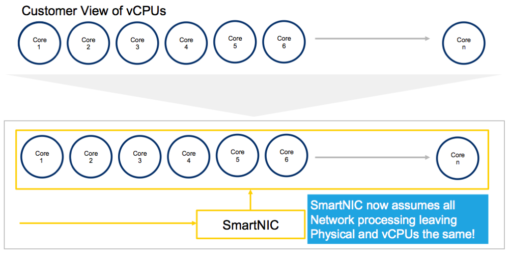 Customer View of vCPUs Diagram